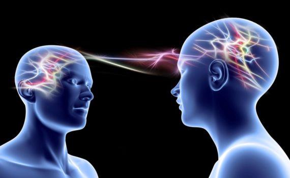 Empatia e cervello