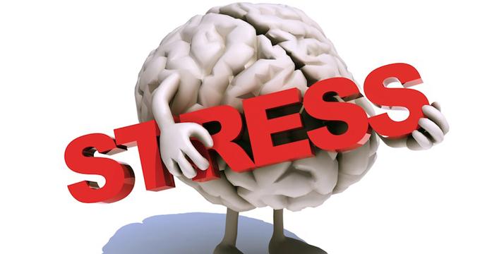 stress e salute